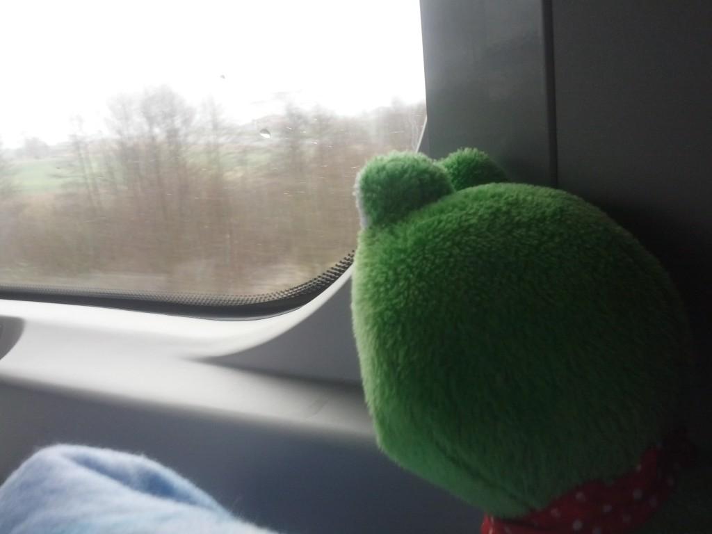 Żaba paczy i nie wierzy - jak to, po co nam ten śnieg w kwietniu?